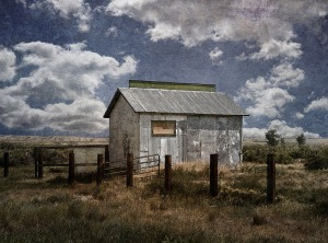 "Harold Naideau ""corrugated mine shack'"