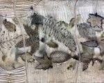 "Joan Blade Johnson ""Eco Print on Silk"""