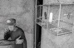 "Keith Prue ""Free As A Bird, Havana, 2019"""