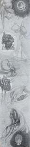 "Jeffrey Casto "" Island of the Sea Map"""